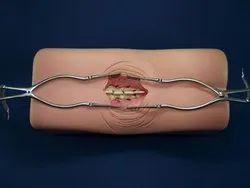 Spine Surgery Simulator
