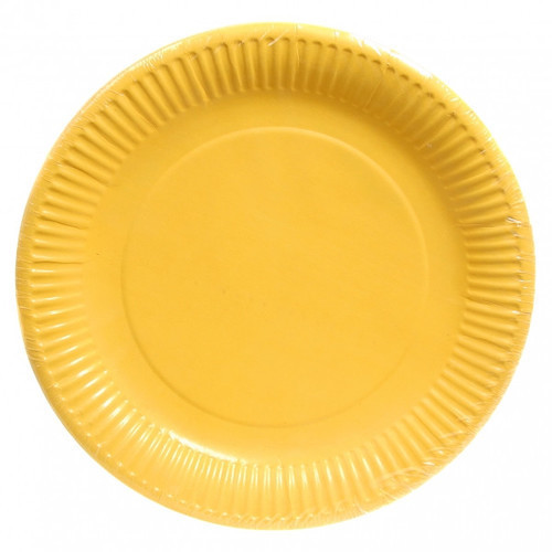 colored disposable plate at rs 2 5 piece disposable paper plate