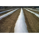 Agriplast Mulch Black and White Zero Transmission Film Delux