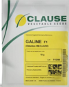 Clause India Brinjal Seed Galine, Pack Size: 10 Gm