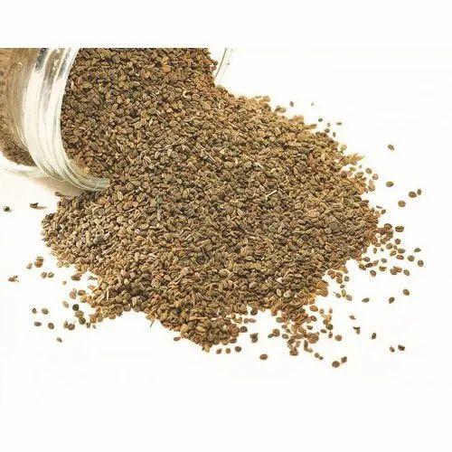 Carom Ajwain Seeds, Packaging Size: 50 Kg