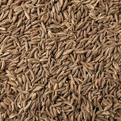 Aaha Impex 12 Month Caraway Seeds, Packet, Packaging Size: 1 Kg