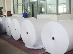 Coated White Release Paper Rolls