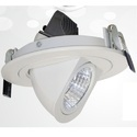 Flexible Led Downlight