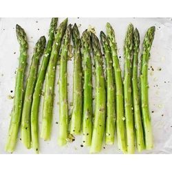 Asparagus Cold Storage Rental Service