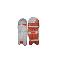 Cricket Leg Guard or Batting Pad