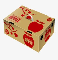 Fruit Packaging Box