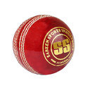 SS CR World 4 Pcs  Cricket Balls