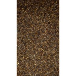 Dry Bold Black Pepper for Cooking