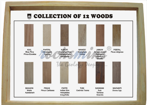 Collection of 12 Woods