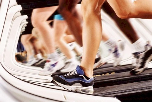 Physical Fitness Services