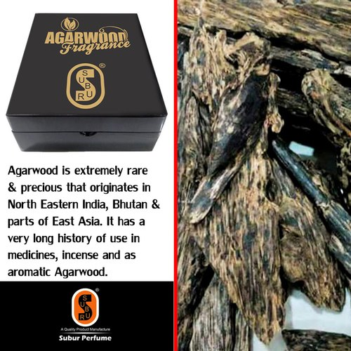 Agarwood Nagaland.SP-027