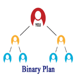MLM Binary Plan Software