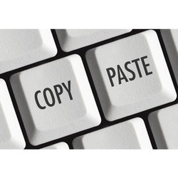 Copy Paste Data Entry Service