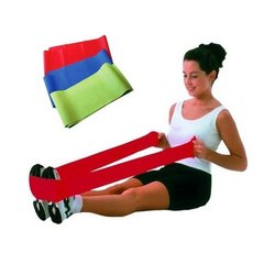 Exercise Theraband Belt