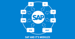 SAP Training With Global Certification in Maharani Road