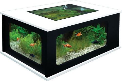 Superior Coffee Table Fish Aquarium