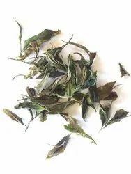 Leaves Kilmelfort White Peony, Packaging Type: Loose