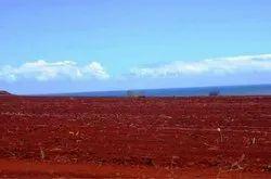 Garden Red Soil