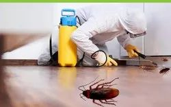 One Time Residential Cockroaches Pest Control Services, in Kanpur