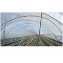 Agricultural UV Protection Films