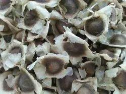 Odisi & PKM Drumsticks Seeds, For Agriculture, Packaging Size: 1kg