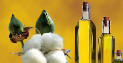 Cottonseed Oil Refined