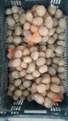 Brown A Grade Pukhraj Fresh Potato, Gunny Bag, Packaging Size: 5 Kg