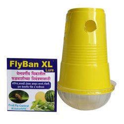 Soft Wood Impregnated With Chemicals Fruit Fly Trap Fruit Fly Insect Trap, Packaging Type: Box