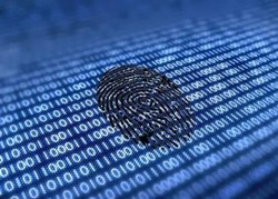 Cyber Forensics Services