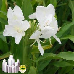 Gingergrass Essential Oil