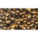 Yrch-1 Hybrid Castor Seeds
