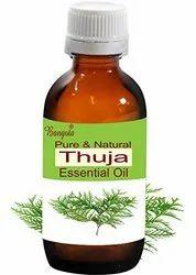 Thuja Leaf Essential Oil