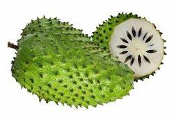 Graviola Soursop Fruit