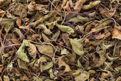 Shyama / Krishana Tulsi Leaves (Dried)