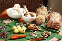 Ayurveda Treatments In Rishikesh