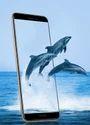 Gionee F 205 Smart Phone  Mobile