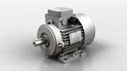 Havells Induction Motor