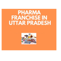 Pharma Franchise Uttar Pradesh