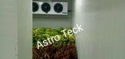 Astro Teck Vegetables And Fruits Cold Storage Room