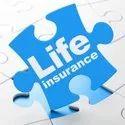 Insurance Consultant