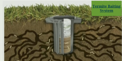 Anti Termite Service