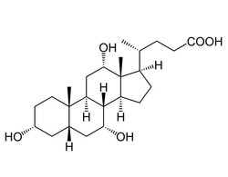 Titan Biotech Cholic Acid