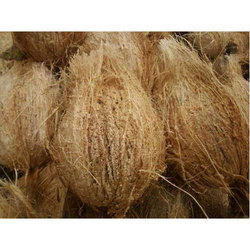 Brown Pollachi Coconut