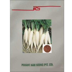 Peasant White Long Radish Seeds, Pack Size: 100 Seeds/Pouch