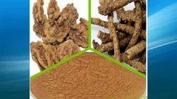 Picrorhiza Kurroa Extract  (Kutki or Picroliv)