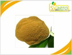Sv Agro Olive Leaf Extract, Packaging Type: Drum, Packaging Size: 25Kg