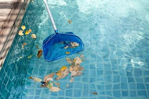 Swimming Pool Maintenance Service In