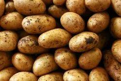 Good Grade Potatoes