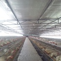 Aluminium Poultry Thermal Insulated Material